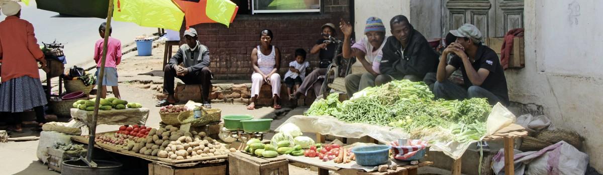 Afrika-erleben Katalog